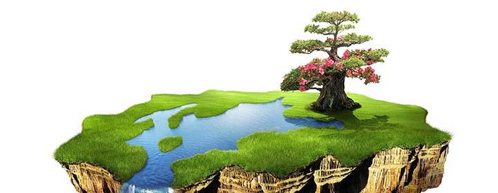 Земля во владении: ваши обязанности и права